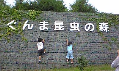 Image1238.jpg